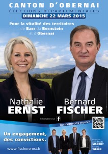 ELECTIONS ERNST-FISCHER - Campagne électorale